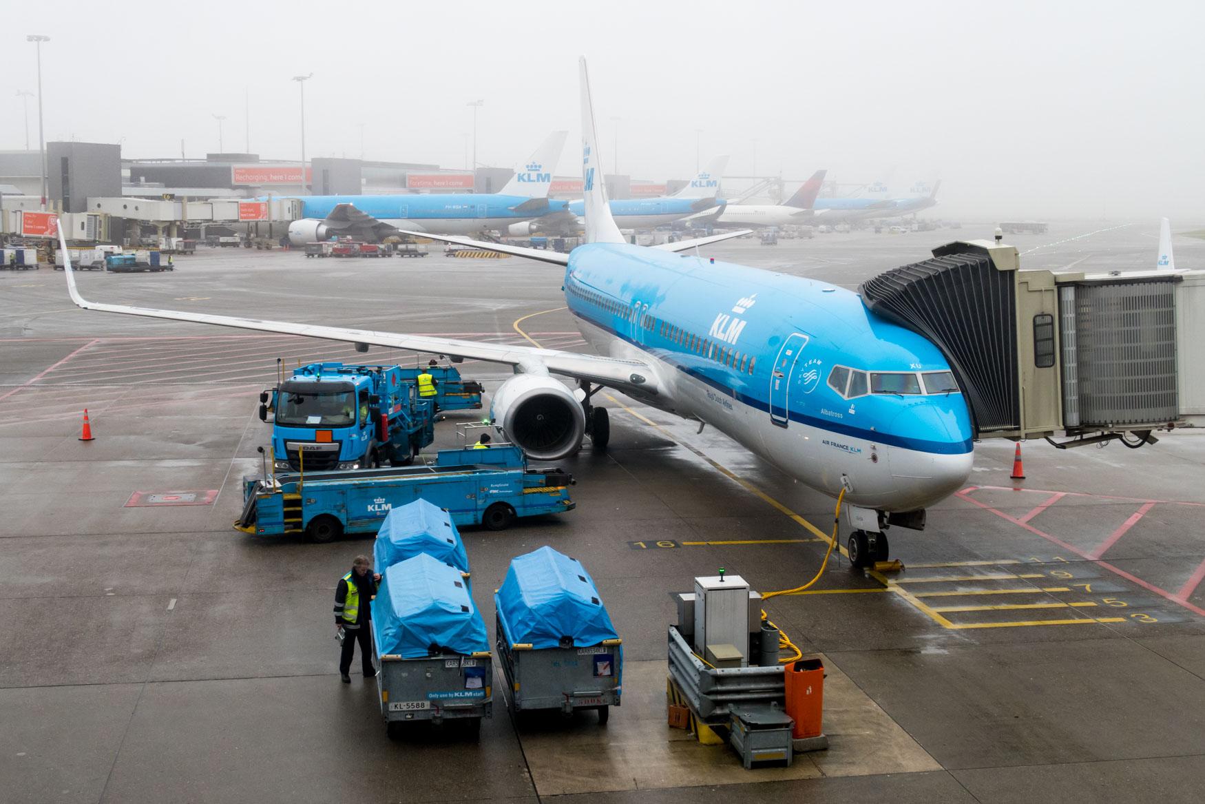 KLM Boeing 737-800 at Amsterdam Schiphol