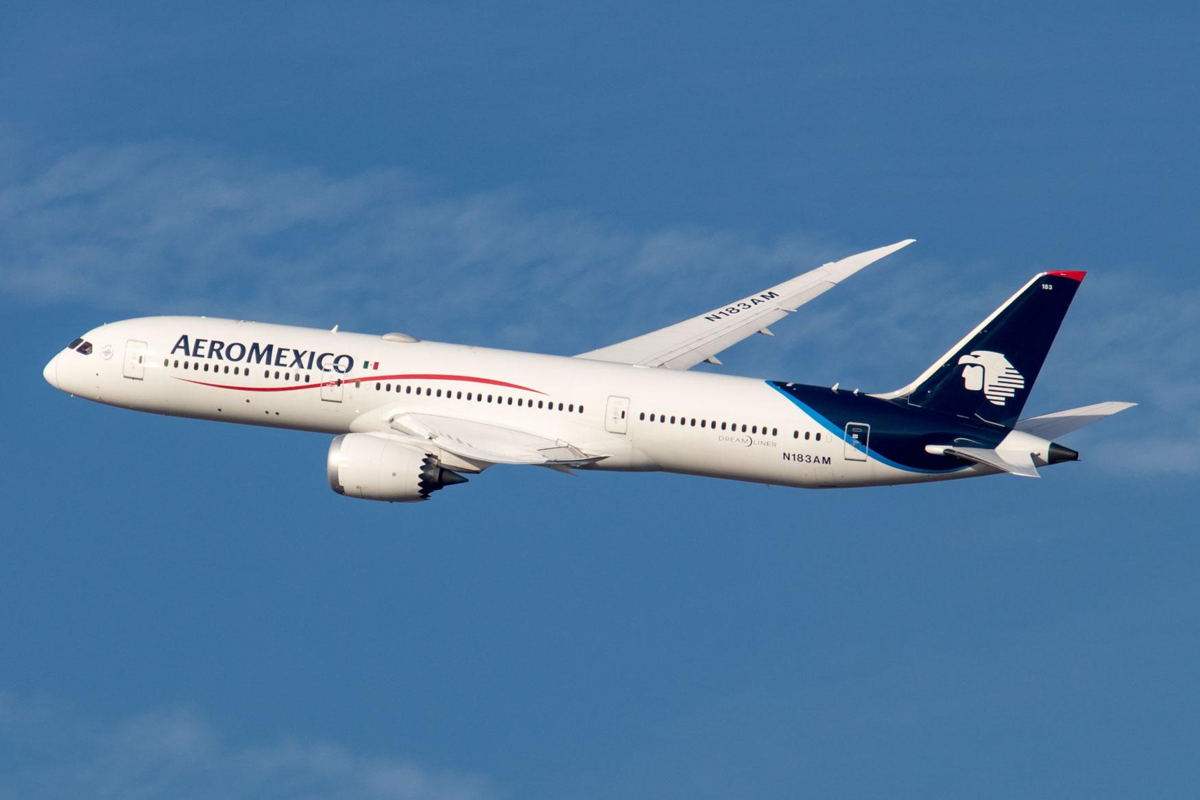 AeroMexico 787 Landing at JFK