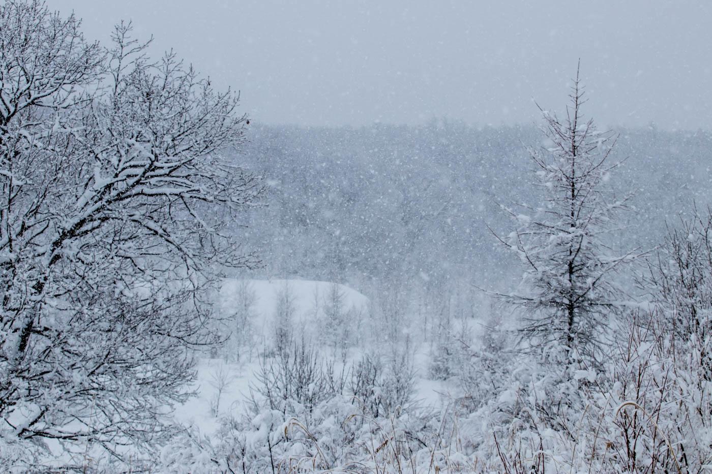 Heavy Snowfall Around New Chitose Airport