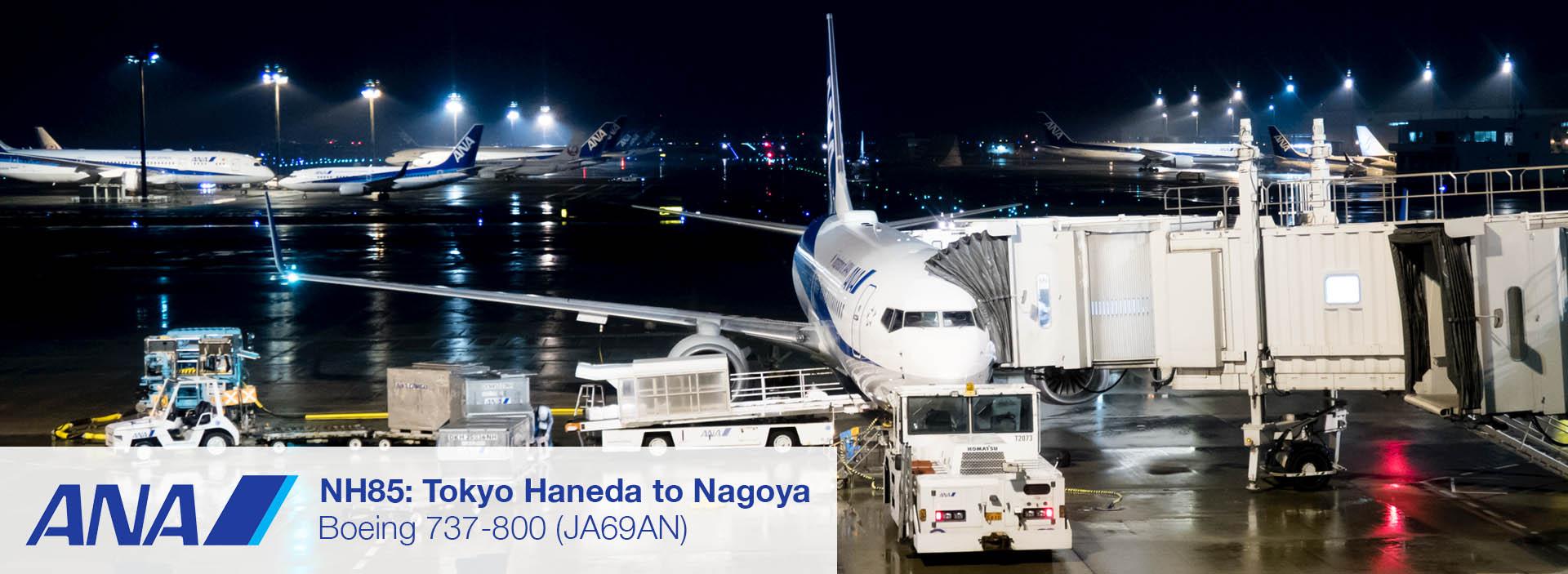 ANA Boeing 737-800 Domestic Economy Class (Tokyo - Nagoya) Review