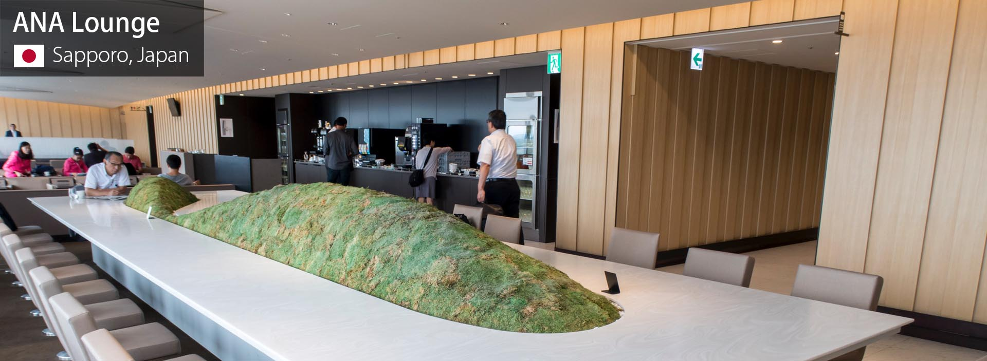 ANA Lounge Sapporo Review