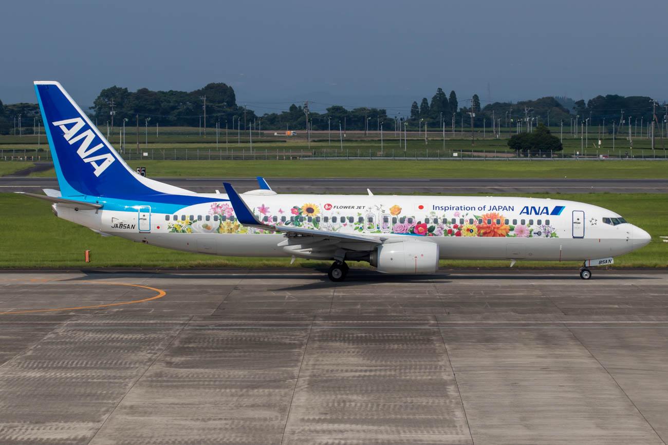 ANA Tohoku Flower Jet 737-800