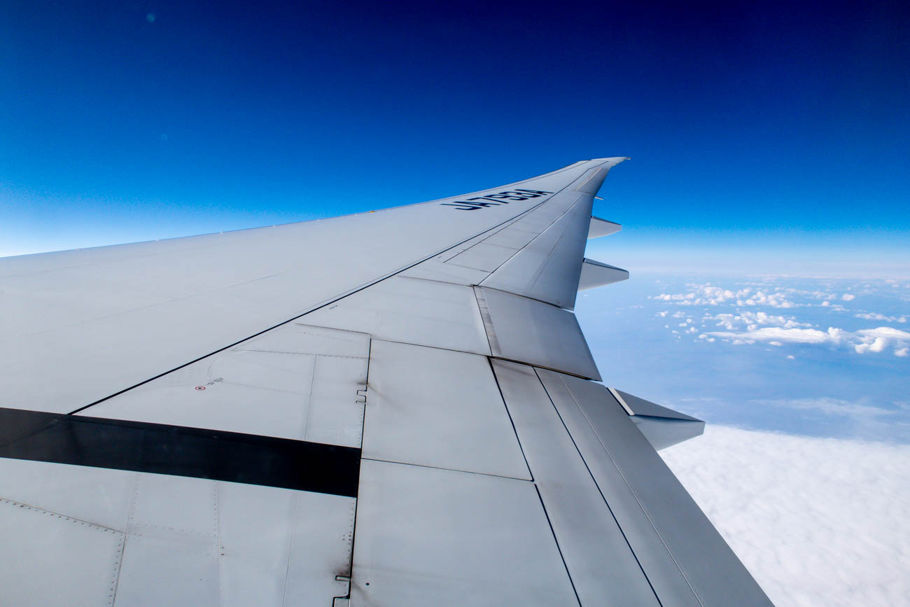 ANA 777-300ER Wing View