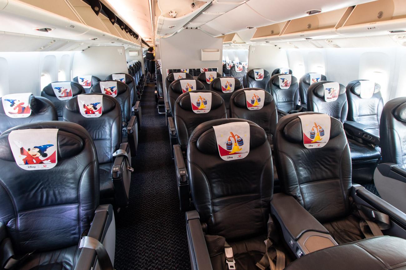JAL Dream Express Fantasia 80 Class J