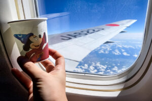 JAL Dream Express Fantasia 80 Cup