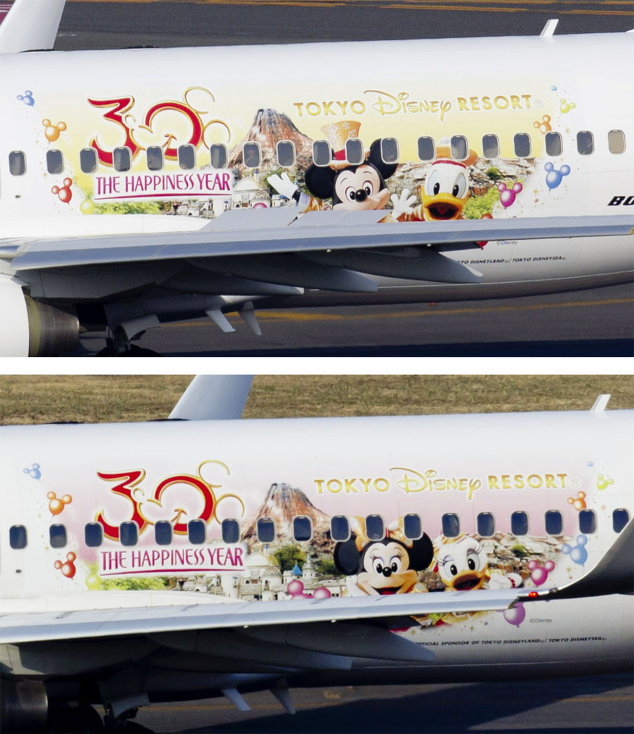 JAL Happiness Express 737